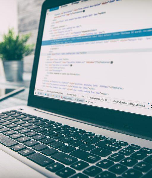 כיצד בוחנים קוד אתר?